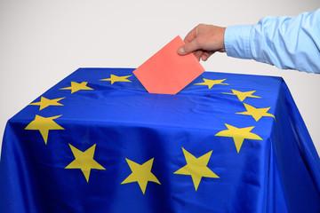 Elezioni europee – divieto di votare nei Testimoni di Geova?